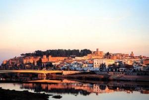Vista general de Badajoz con la Alcazaba
