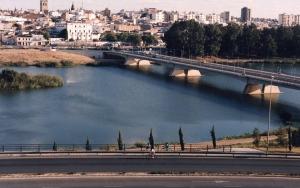 Puente de la Autonomía