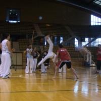 VNB 2008
