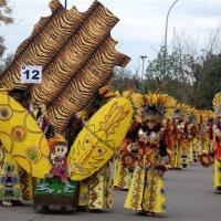Carnaval 2011 - Desfile de Comparsas, Grupos Menores y Artefactos - 18