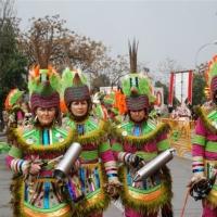 Carnaval 2011 - Desfile de Comparsas, Grupos Menores y Artefactos - 45