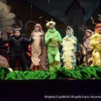 Concurso de Murgas 2013 - Preliminares 1 de Febrero - 31