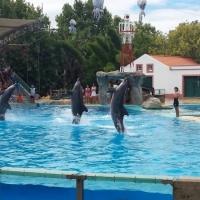 Visita al zoo de Lisboa. - 5
