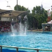Visita al zoo de Lisboa. - 12