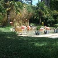 Visita al zoo de Lisboa. - 13