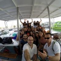 Paseo con delfines. Estuario do Sado. - 3
