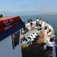 Paseo con delfines. Estuario do Sado. - 14