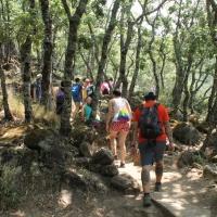 Fin de semana en el Valle del Jerte. - 4