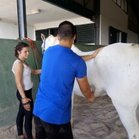 Rutas a caballo. - 5