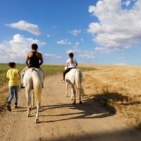 Rutas a caballo. - 7