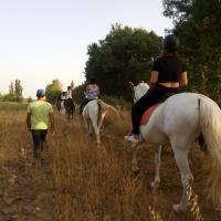 Rutas a caballo. - 12