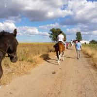 Rutas a caballo. - 15