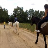 Rutas a caballo. - 18