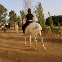 Rutas a caballo. - 23