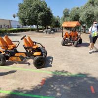 Coches a pedales en padanías - 3