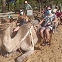 Ruta en camellos - 1