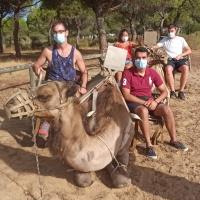 Ruta en camellos - 4