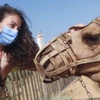 Ruta en camellos - 18