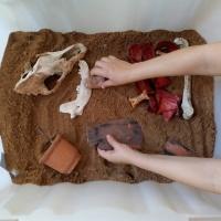 Jóvenes arqueólogos - 8