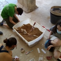 Jóvenes arqueólogos - 13