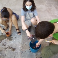 Jóvenes arqueólogos - 19