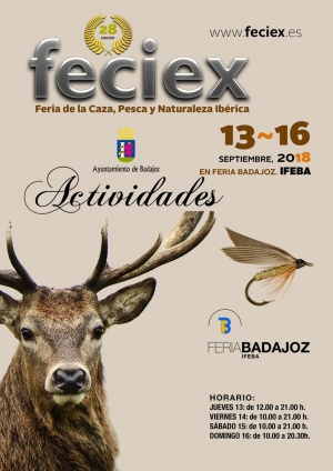 Actividades Feciex18