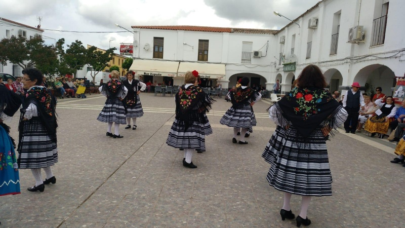 FESTIVAL DE BAILES REGIONALES EN NOVELDA DEL GUADIANA, ORGANIZADO POR EL �REA DEL MAYOR DEL IMSS.